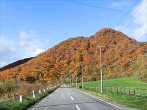 日高路の紅葉