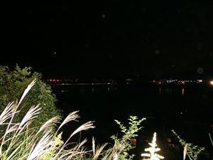 杵築公園からみる八坂川の夜景
