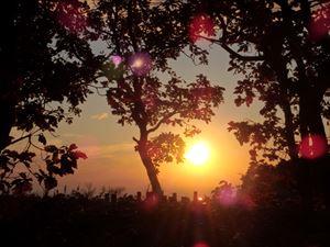 墓地に沈む 暖かい夕日