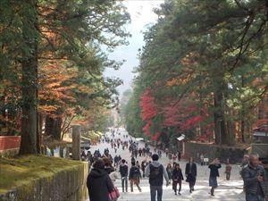 紅葉がきれいな東照宮