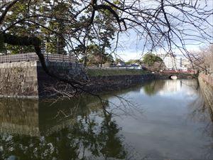 小田原城のお堀 美しい