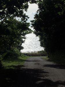 丘を降りて海岸へ向かう道