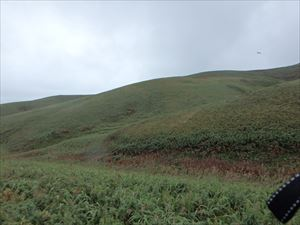 ゴロタ岬への丘陵 3人ほど歩いていた 雨の中ご苦労様