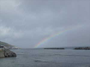 雨あがりの虹 大人が2人、走って写真を 撮っていましたよ
