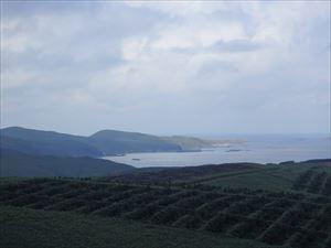 スコトン岬方面の景色