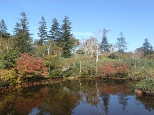 池塘に紅葉が美しい