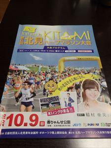 稲村亜美さんが大きい 大会プログラム