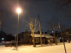 雪降る中島の夜 この頃はまだ元気だった