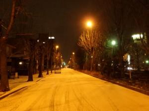 寒い雪道を 一人とぼとぼ歩く 街燈がわびしい