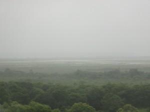 文字通り、霧が多い湿原だ