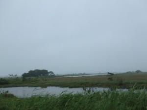 湿原の沼 遠くに家々