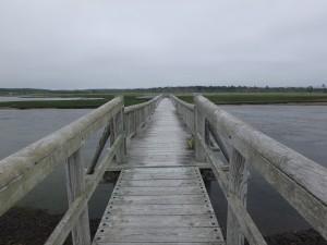 木道で湾を渡る