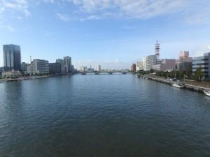 柳都大橋から眺めた萬代橋
