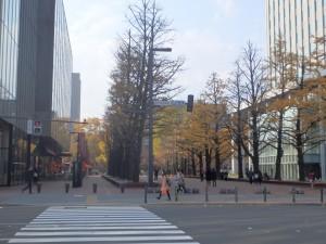 赤レンガ広場のきれいな紅葉