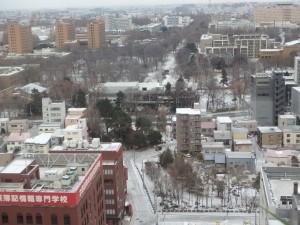 雪の北大構内