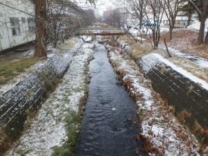 札幌市内で珍しい小川