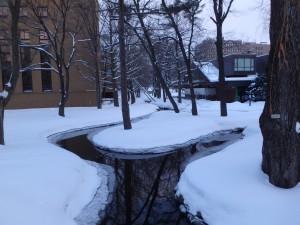 きれいな冬の小川 冷たいだろうな