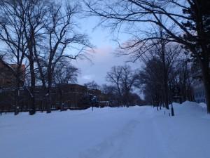 雪道の北大構内を走る