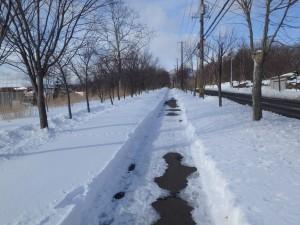 大谷高校前の歩道を走る 走りやすい