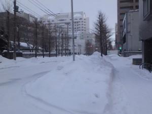 この辺りは雪が多い