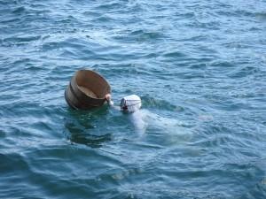 とても大変そうな海女漁