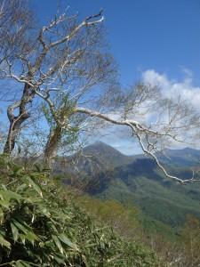 遠くにオロフレ山