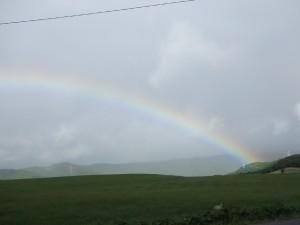 きれいな虹に感動