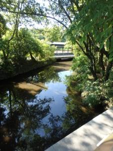 外宮のきれいな川