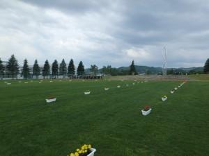きれいな芝生の広い会場