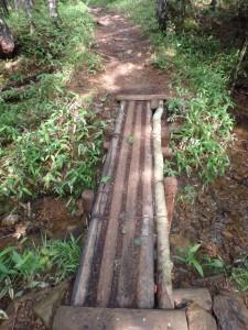 少し古めの橋を渡る