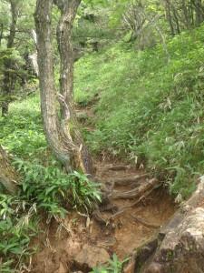 岩の多い坂道を登る