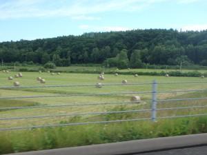 絵になる牧草ロール