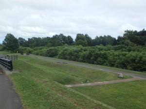 川沿いのロードは車がいない 安心して走ることができる