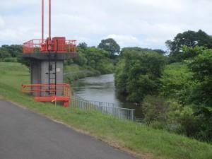 走りやすい河川敷の道