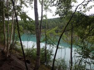 遊歩道を歩きながら 「青い池」を眺める