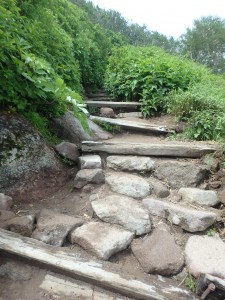 良く整備された道を登る 外人さんも多い