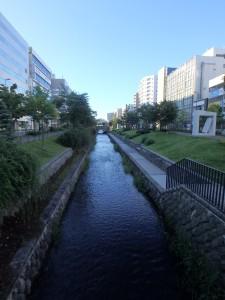 きれいなまっすぐな川