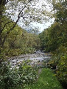 余別川 サクラマスの母川