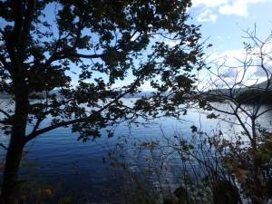 きれいな洞爺湖を 眺めながら走る