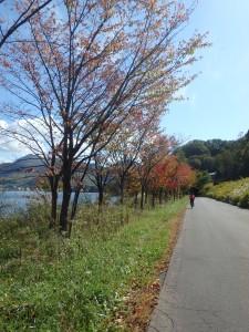 秋が深まる洞爺湖畔