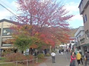 賑わう秋の支笏湖