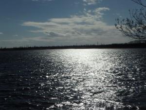 輝くウトナイ湖
