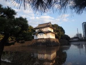 朝日できれいな桜田巽櫓
