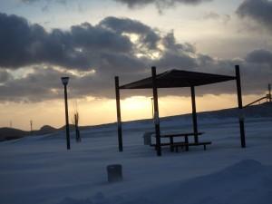 きれいな冬景色の公園