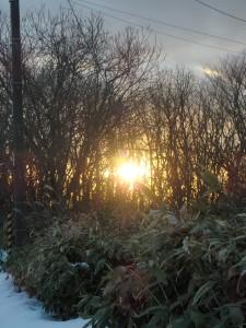 夕日が暖かい