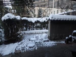 きれいな中庭