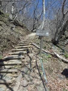 山道登山が始まった