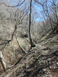 とても急な坂道を下る ちょっと怖い