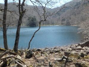 キラキラ輝く湖面