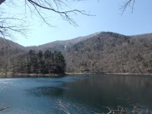 きれいで神秘的な湖